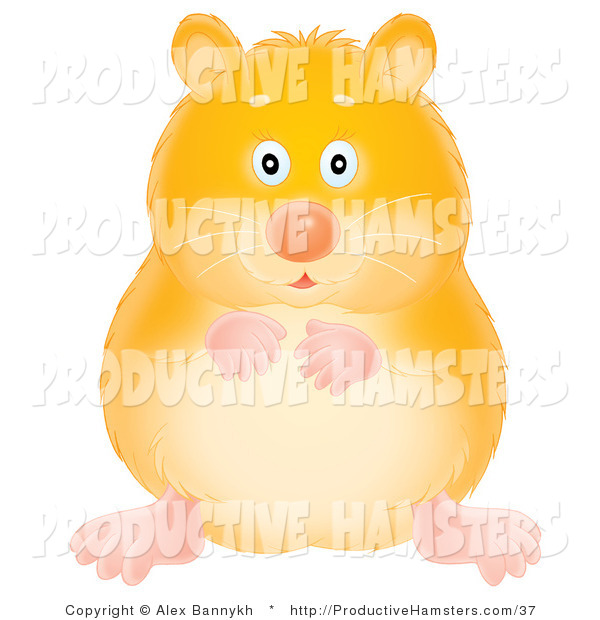 Illustration of a Chubby Yellow Hamster