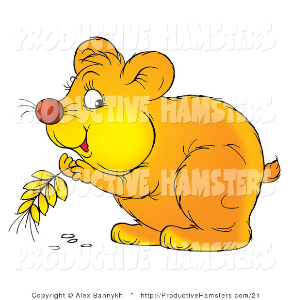 Illustration of a Hamster Storing Grains in His Cheeks