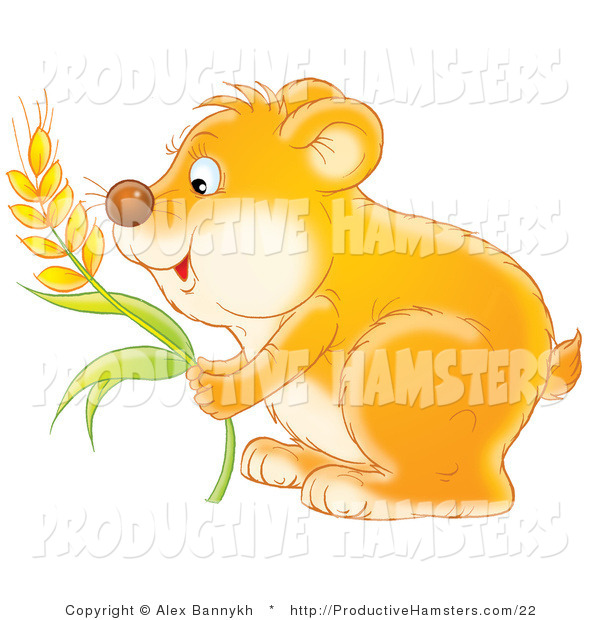 Illustration of a Hungry Hamster Storing Wheat Grains into His Cheeks
